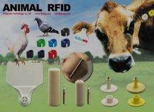 Application of RFID in Modern Dairy Farms