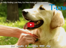 RFID Pet Tags To Help Finding Lost Pets